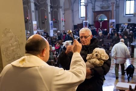 Il barboncino benedetta - foto Marco Secchi