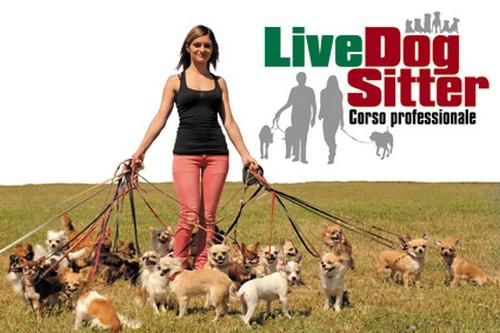 A Verona un corso per dog sitter