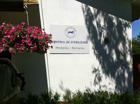 Il centro di sterilizzazione di Medgidia
