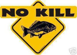 NoKill_pesca