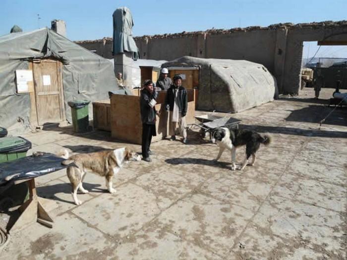 Bruno e Chiara in Afghanistan