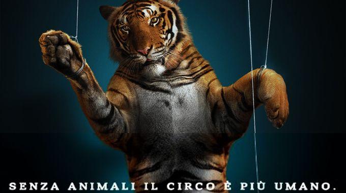 Circo_animali