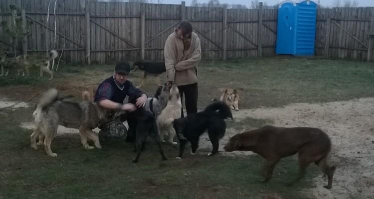 Cisternino con i cani che si sono salvati
