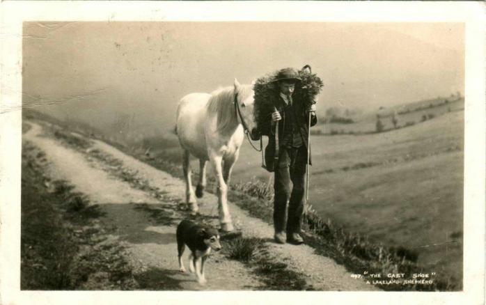uomo cavallo cane