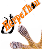 herpethon
