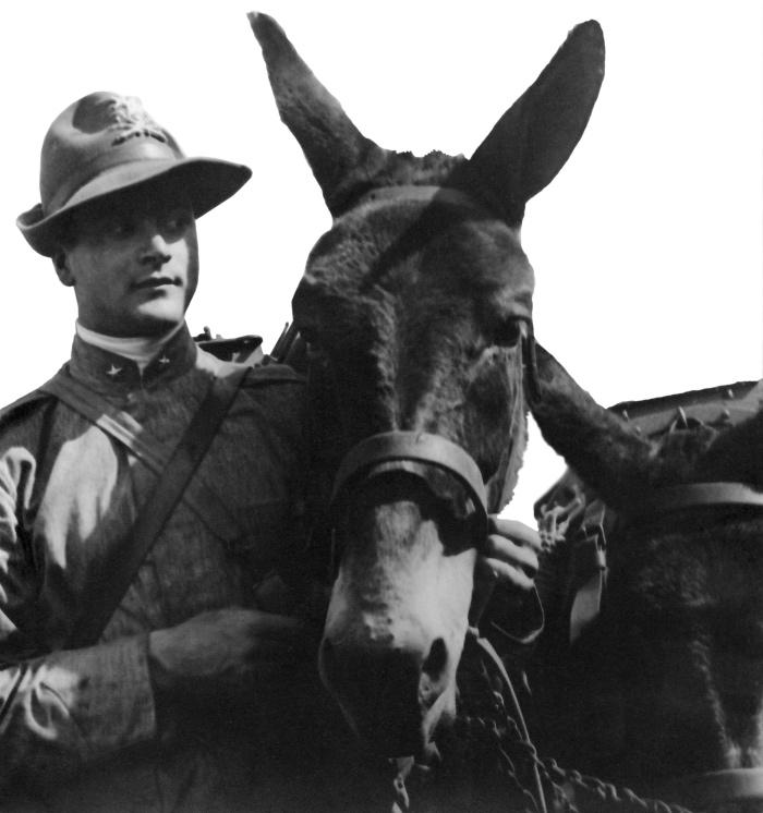 Ferruccio Bernardis sindaco di Gorizia e il mulo Violetto