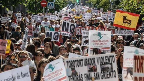 Una recente manifestazione a Madrid