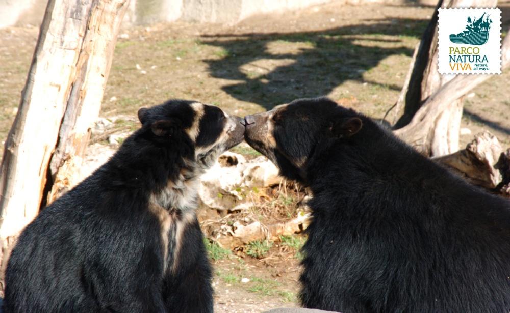 Luis e Bahia al Parco Natura Viva